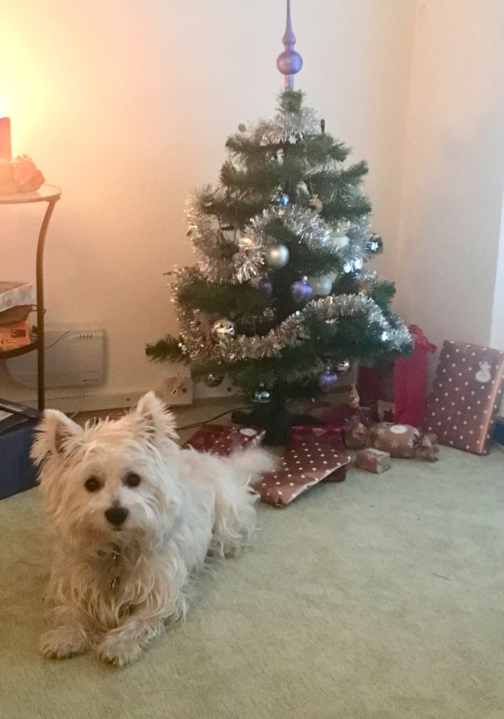 Vánoční strom dárky